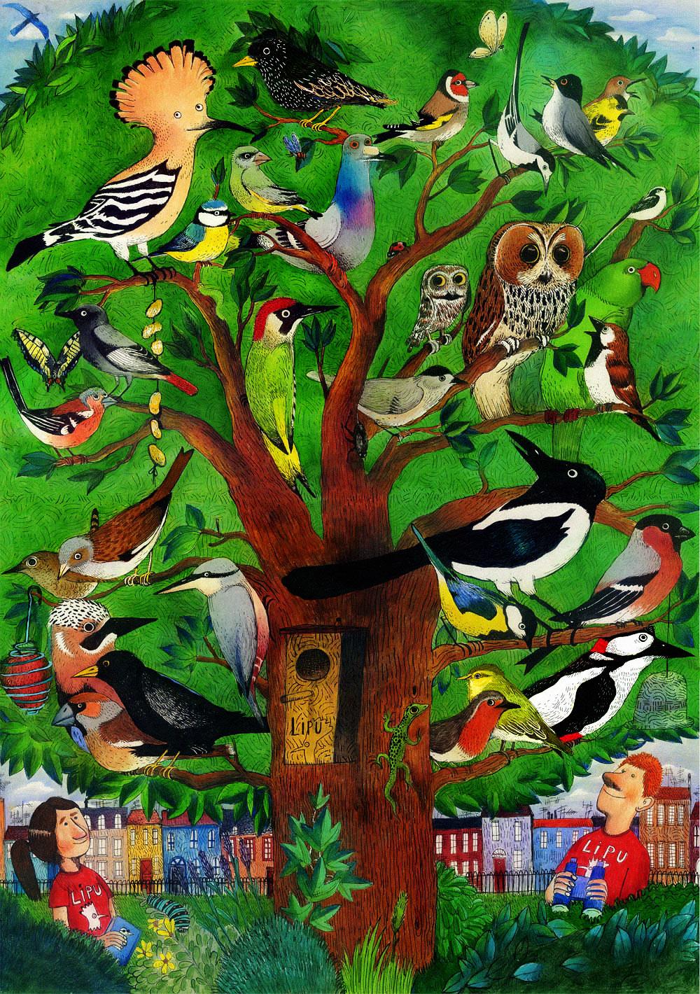 Federico Appel è l'illustratore che ha illustrato le pagine della sezione Birdgarden del sito Lipu