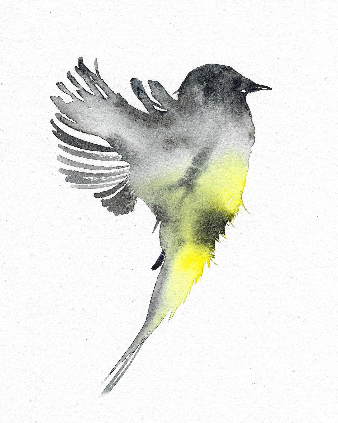 Conosciuto Silvia Molinari crea, in pochi istanti, illustrazioni  QO56