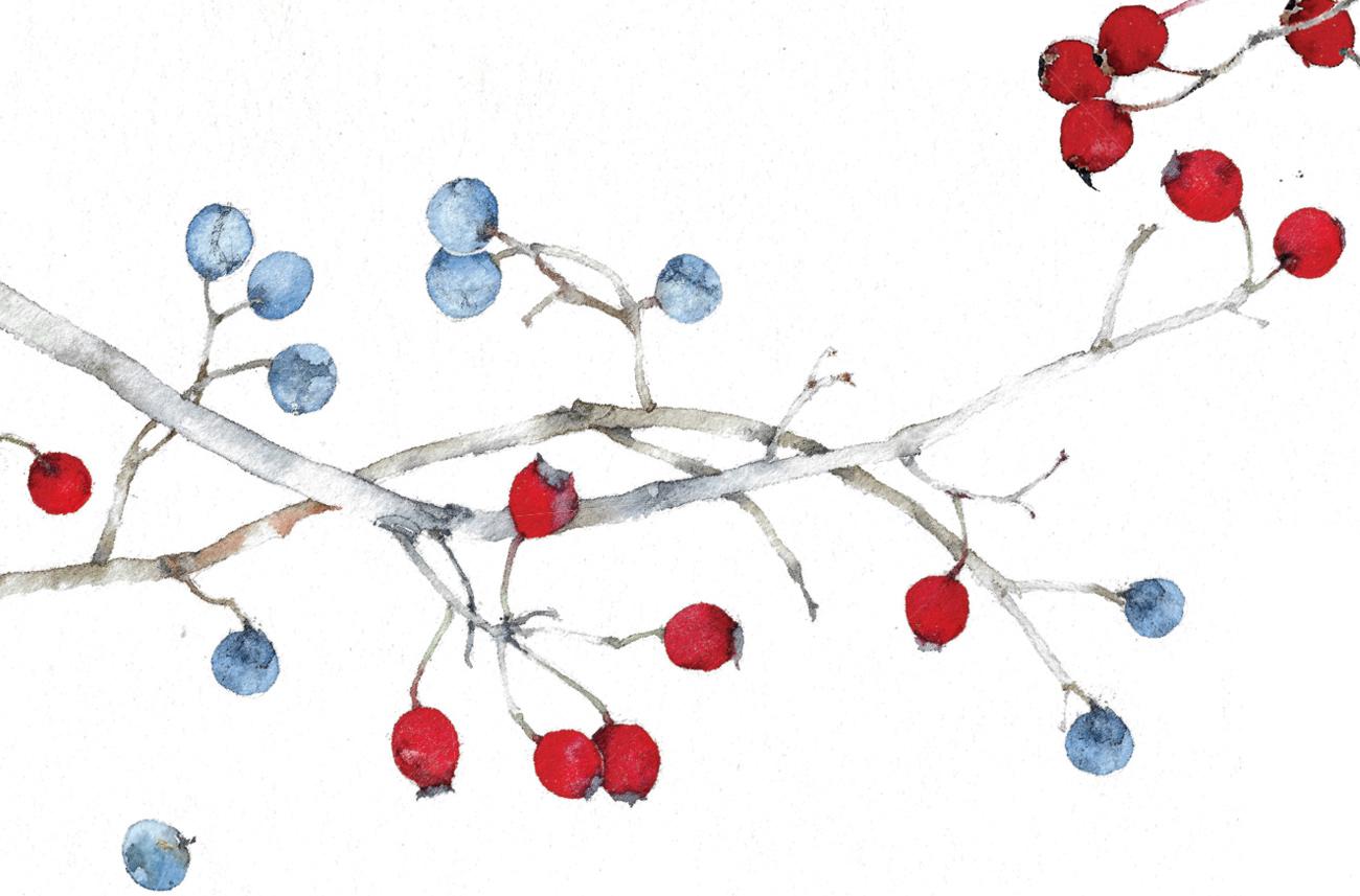 Popolare Silvia Molinari crea, in pochi istanti, illustrazioni  EM81